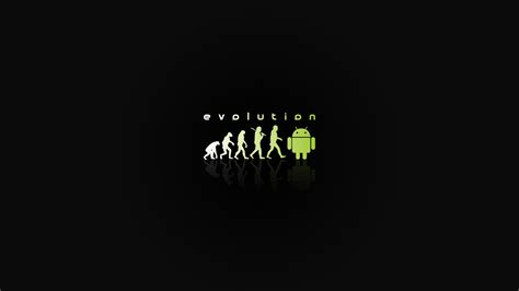 wallpaper for android box android evolution wallpaper hd wallpaper wallpaperlepi