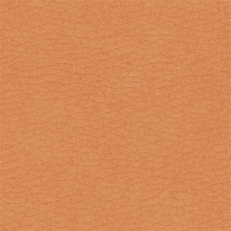 texture of human skin архивы блогов coloradofilecloud