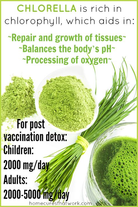 How To Detox From Vaccinations by Detoxification And Health Restoration After Vaccination