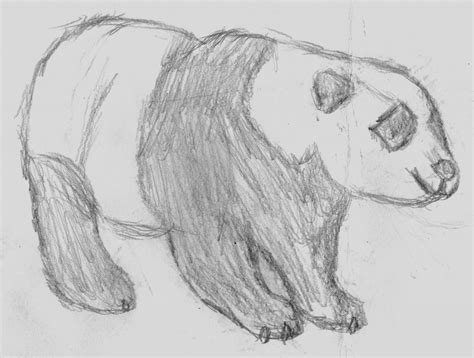 easy sketches cool drawings of animals pencil drawing