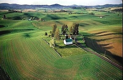 Home Patterns by Airphoto Aerial Photograph Of Palouse Church Palouse