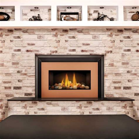 glass door fireplace insert napoleon gdi30nsb basic fireplace insert w glass door at