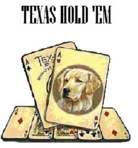 golden retriever fort worth golden retriever club dallas fort worth dogs our friends photo
