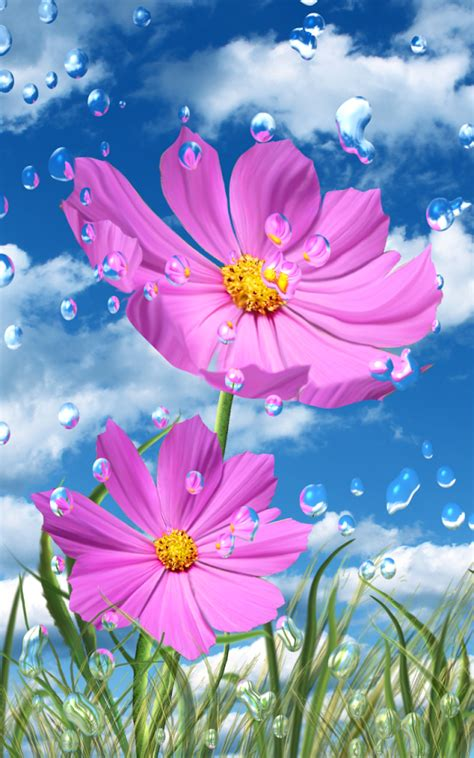 hd wallpaper for android flower download summer rain flowers hd lwp for android summer