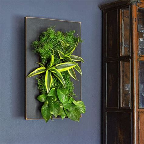 Bright Green Living Wall Planter by Grovert Wall Planter Black