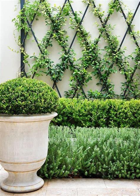 trellis garden ideas 15 creative and easy diy trellis ideas for your garden