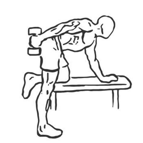 tricep kickbacks on bench triceps kickback gymwolf