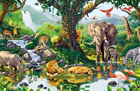 imagenes reino animal el reino animal