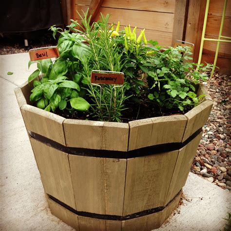 herb container garden container herb garden stuff to do