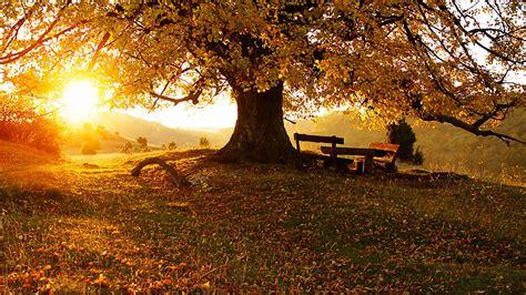 imagenes de otoño en hd rincones rurales para disfrutar del oto 241 o noticias