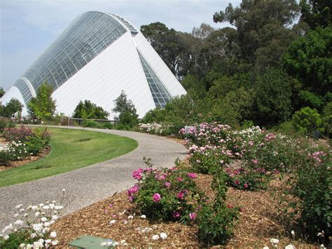 Botanical Gardens Conservatory Adelaide Botanic Gardens Bicentennial Conservatory