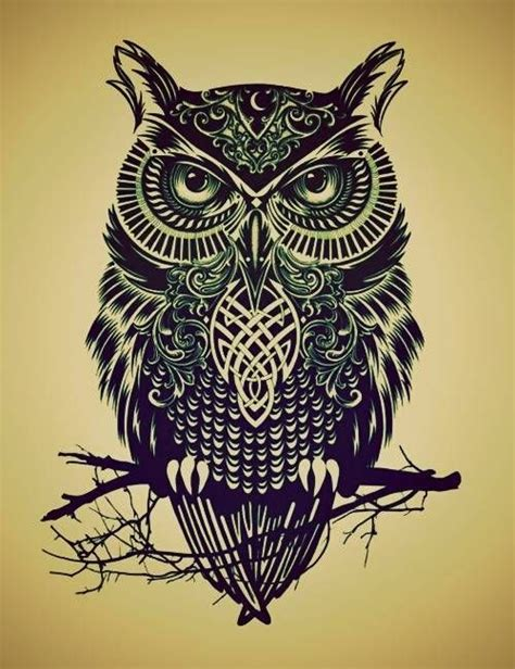 How To Draw An Owl Easy Google Search Owls Pinterest Really Owl Drawings With Color