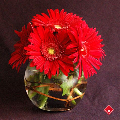 gerbera daisy centerpiece for your montreal event 183 the
