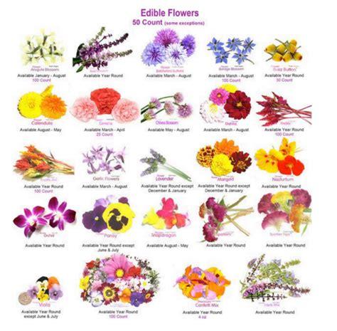 fiori commestibili vendita fiori commestibili stratfordseattle