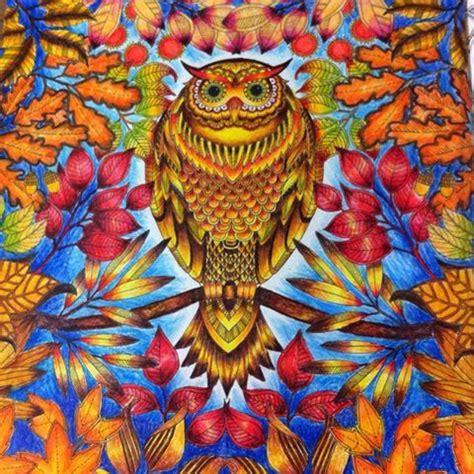 secret garden coloring book owl jardim secreto jardim secreto secret garden johanna