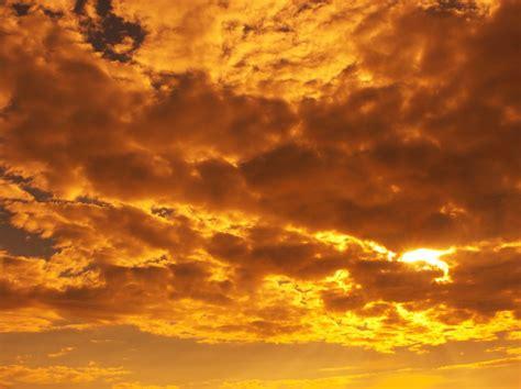 Sky Gold triveni san