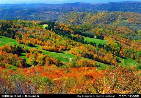Bald Knob Wv by Canaan Valley Ski Resort Slopes Picture 020 October 8