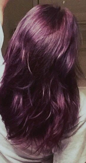 eggplant color hair 17 best ideas about eggplant hair on purple
