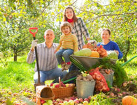 family vegetable garden happy family with harvest in garden royalty free stock