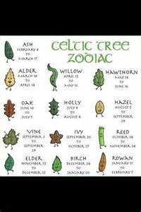 Trees And Their Meanings Celtic Tree Zodiac Symbols And Their Meanings Pinterest