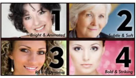 see for yourself what dressing your truth is doing for women dressing your truth course and the 4 energy profiles