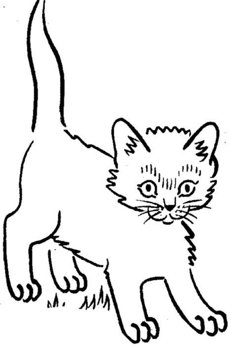 printable coloring sheets kittens printable kitten coloring pages az coloring pages