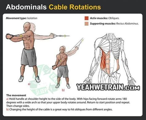 abdominals cable rotations fitness exercise healthy yeah we groups