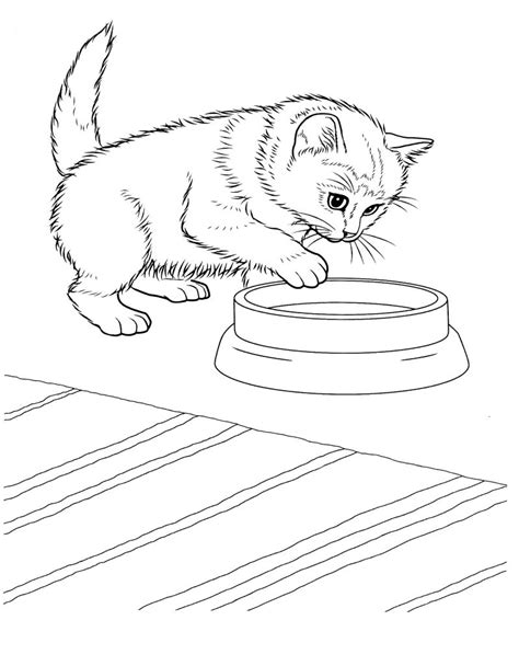 coloring pages of baby kitten free printable kitten coloring pages for kids best