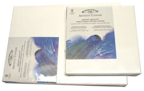 Cat Acrylic Winsor winsor newton artists canvases value packs boxes