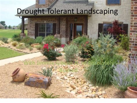 How To Landscape Your Front Yard Drought Tolerant Education Absolutely Bushed Landscaping