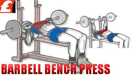 assisted bench press assisted nedr assisted ne anlama gelir euro star gym