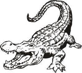 crocodile coloring pages free printable alligator coloring pages for