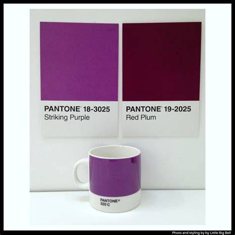 Interiors For Home littlebigbell pantone purple photo by little big bell