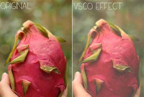 vscocam photoshop tutorial blog elle how to do vscocam effects in photoshop