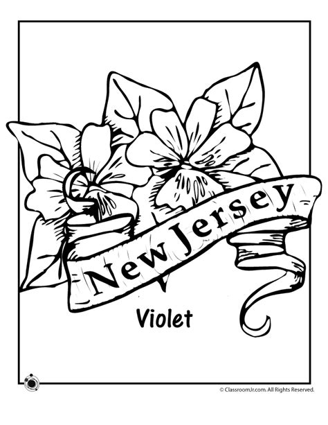 Coloring Page Of New Jersey State Flower | new jersey state flower coloring page classroom jr az