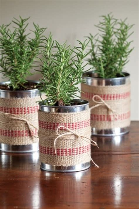 Herb Garden Gift Ideas Diy Gift Plant Projects Diy Gifts Baby Spinach And Herbs Garden