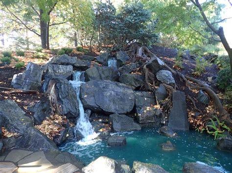 japanese gardens sydney auburn botanical gardens