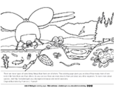 ask a biologist coloring page human heart biology coloring pages worksheets asu ask a biologist