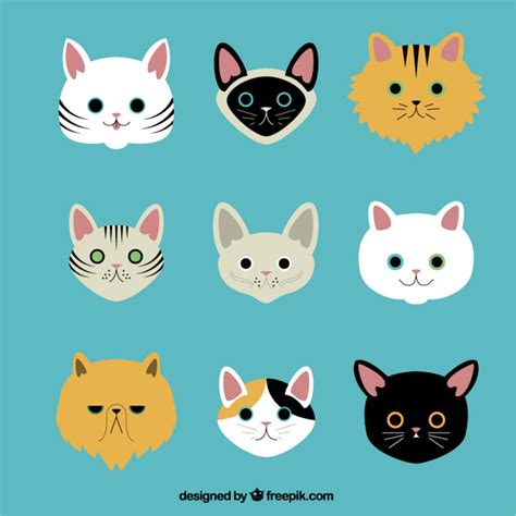 variety of breeds variety of cat breeds vector free