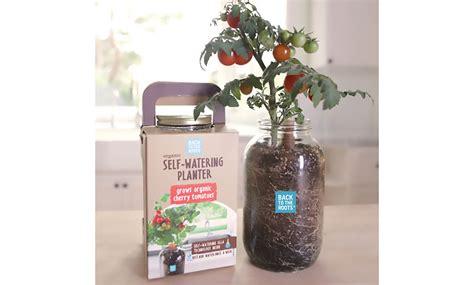 diy self watering herb garden diy self watering herb garden indoor garden kit diy herb