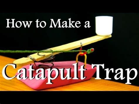 How To Make A Catapult Out Of Paper - how to make a catapult trap from office supplies