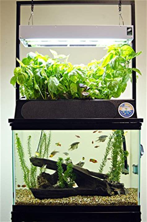starting aquaponics starter kits aquariums