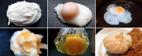 come si cucina l uovo in camicia come si fa l uovo in camicia dissapore