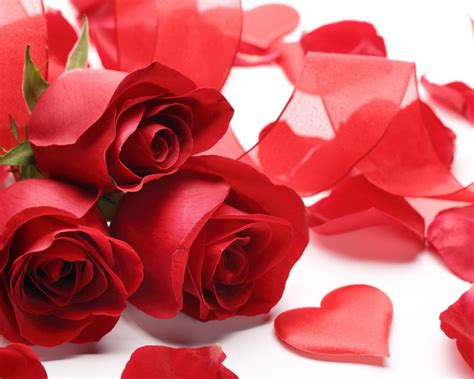 valentines day red roses happy valentines day 2015 red roses wallpapers13 com