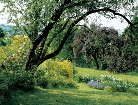 alberi colorati da giardino giardini