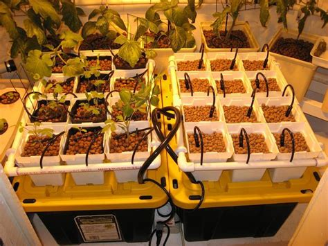12 creative and innovative homemade hydroponics systems