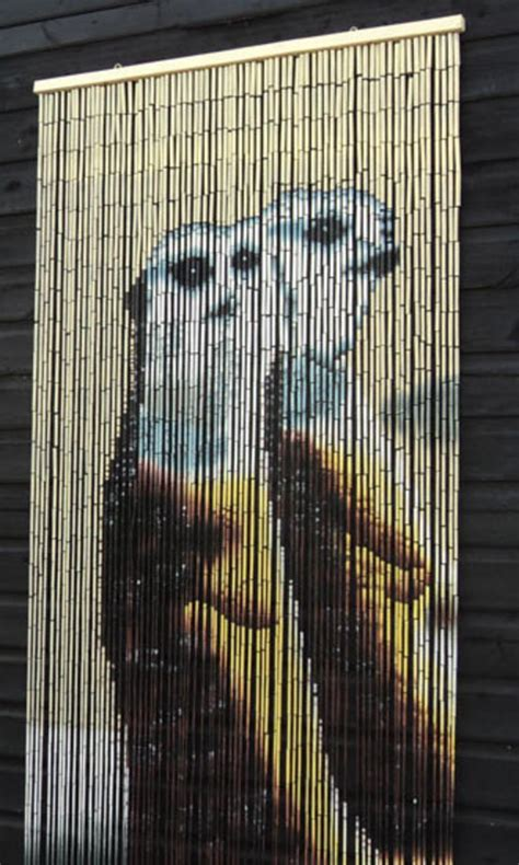 bead door curtain best beaded curtain ever meerkats hehehehehehe