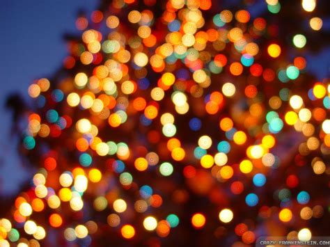 4 essential safety tips when installing christmas lights