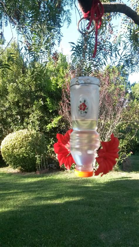 imagenes de casitas y bebedero p colibri con botellas descartables m 225 s de 1000 im 225 genes sobre aves en pinterest plantas y