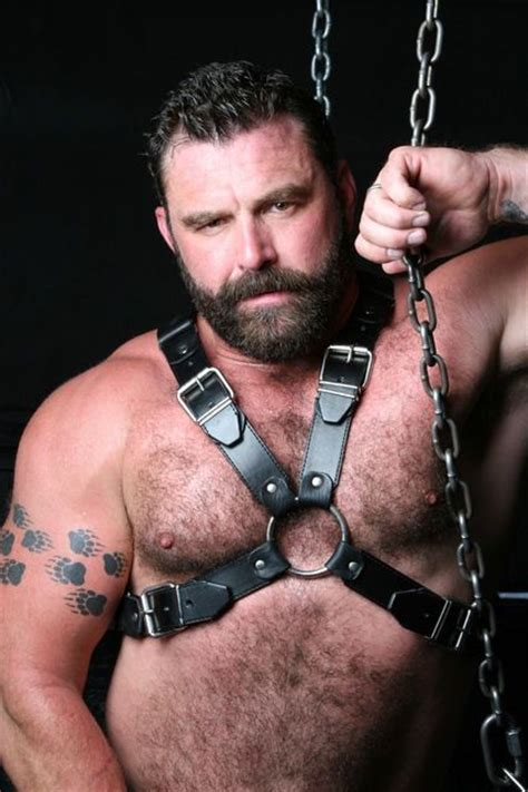Jo In Harness Chain S 66 best leather images on leather